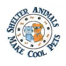 Shelter Animals Make Cool Pets Tee