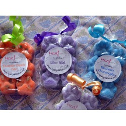 Paw Print Soy Wax Tart Melts
